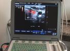 Mallorca Arzt Medizin Centrum Santanyi Dr. Rösel Ultraschall